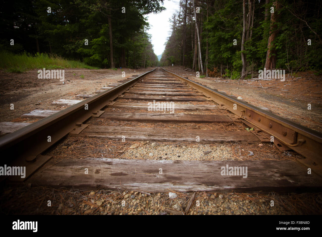 Old wooden railroad tracks running through countryside - Stock Image