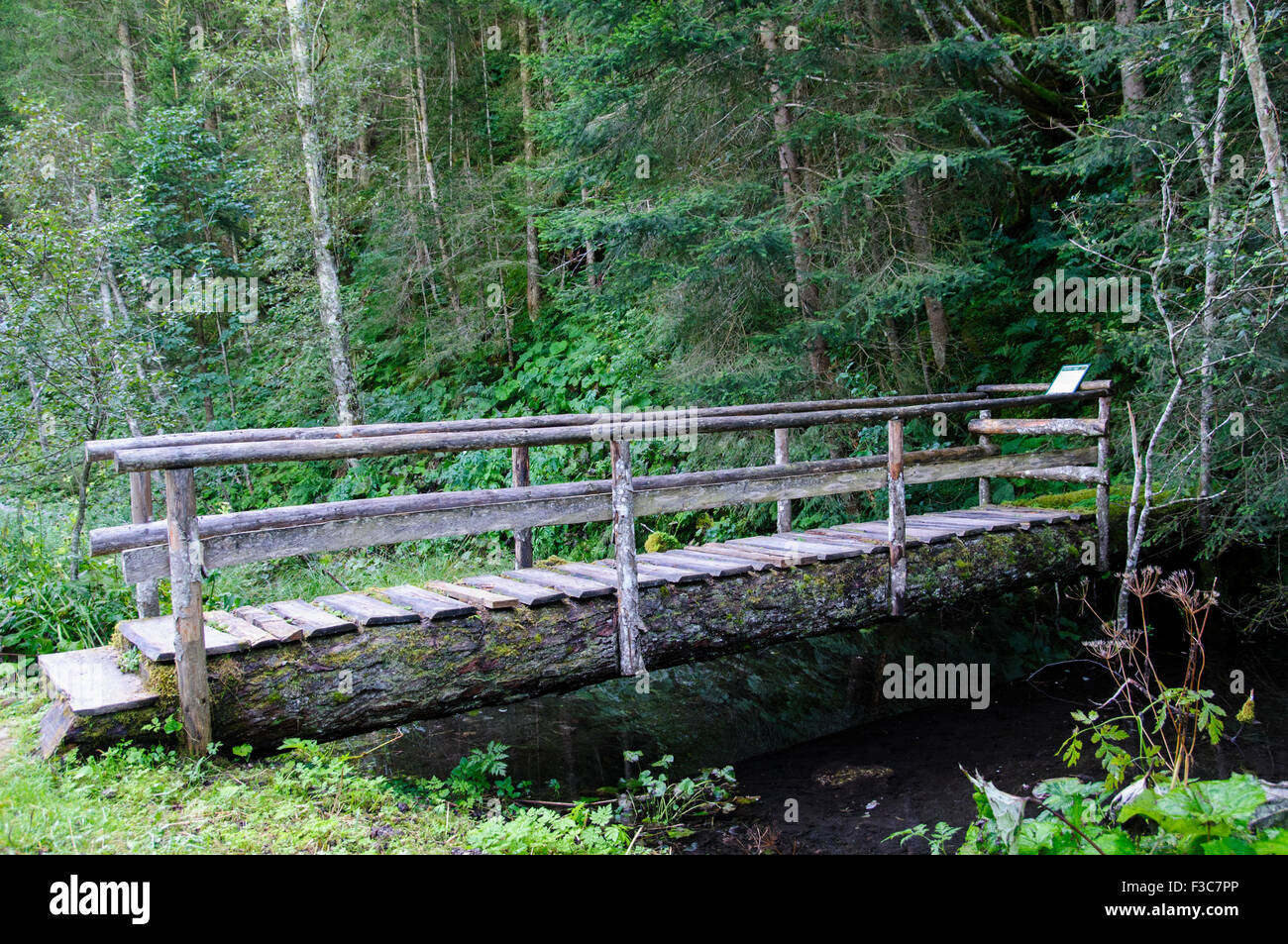 wooden bridge in a lush forest. Photographed in Tirol Austria. - Stock Image