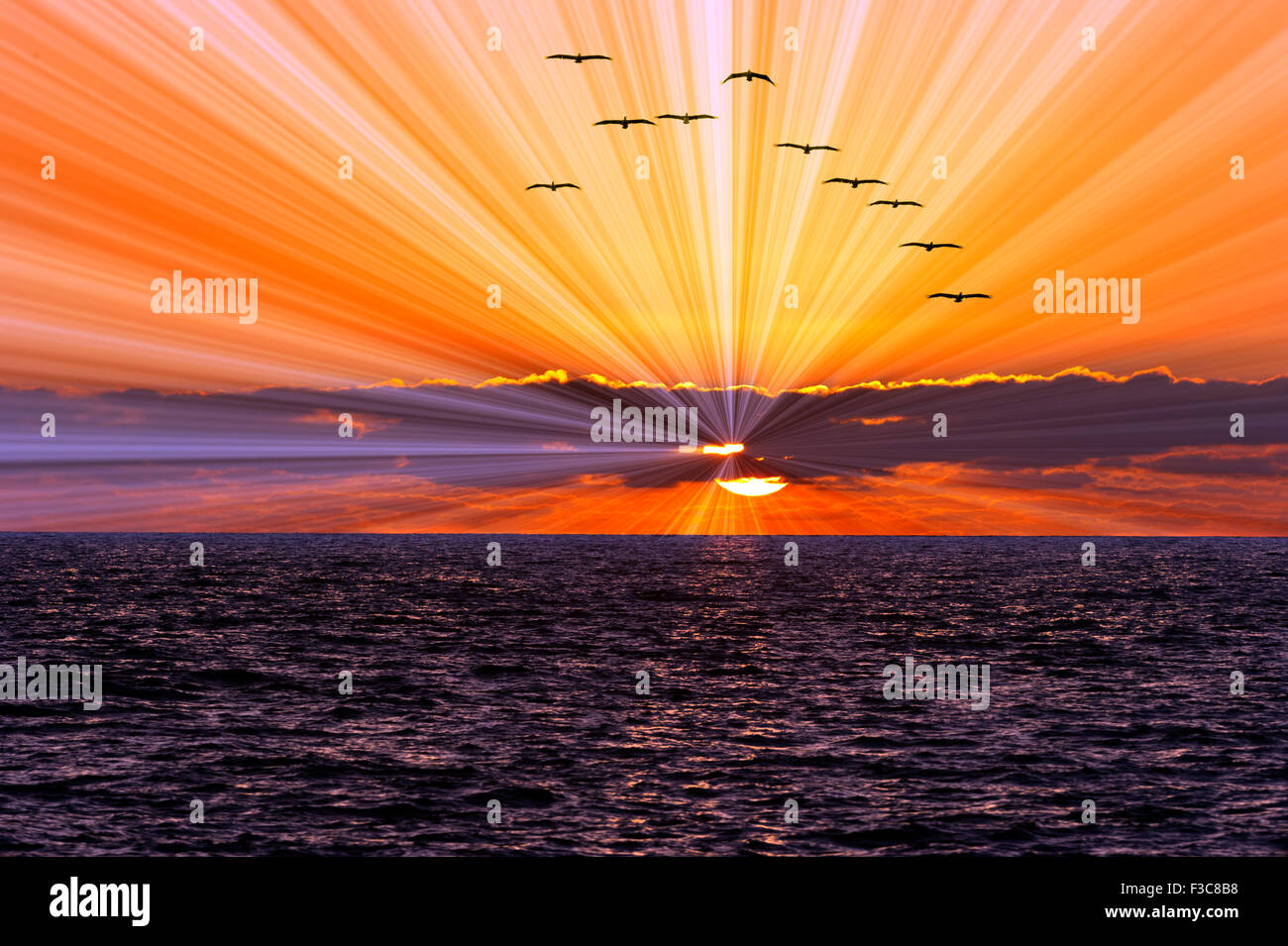 Sun ray ocean sunset is a bright burst of sun rays shooting out from behind the clouds as a flock of birds flies - Stock Image