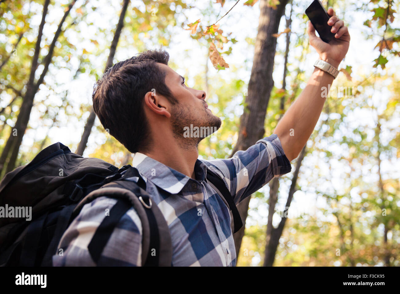 Portrait of a man searching connection on the phone in the forest - Stock Image