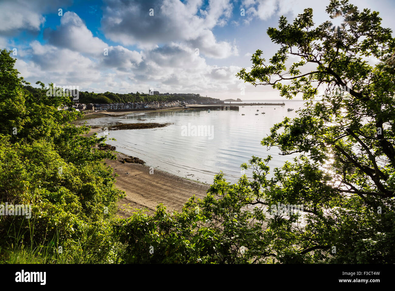 Oysters port Cancale French Brittany France Europe - Stock Image