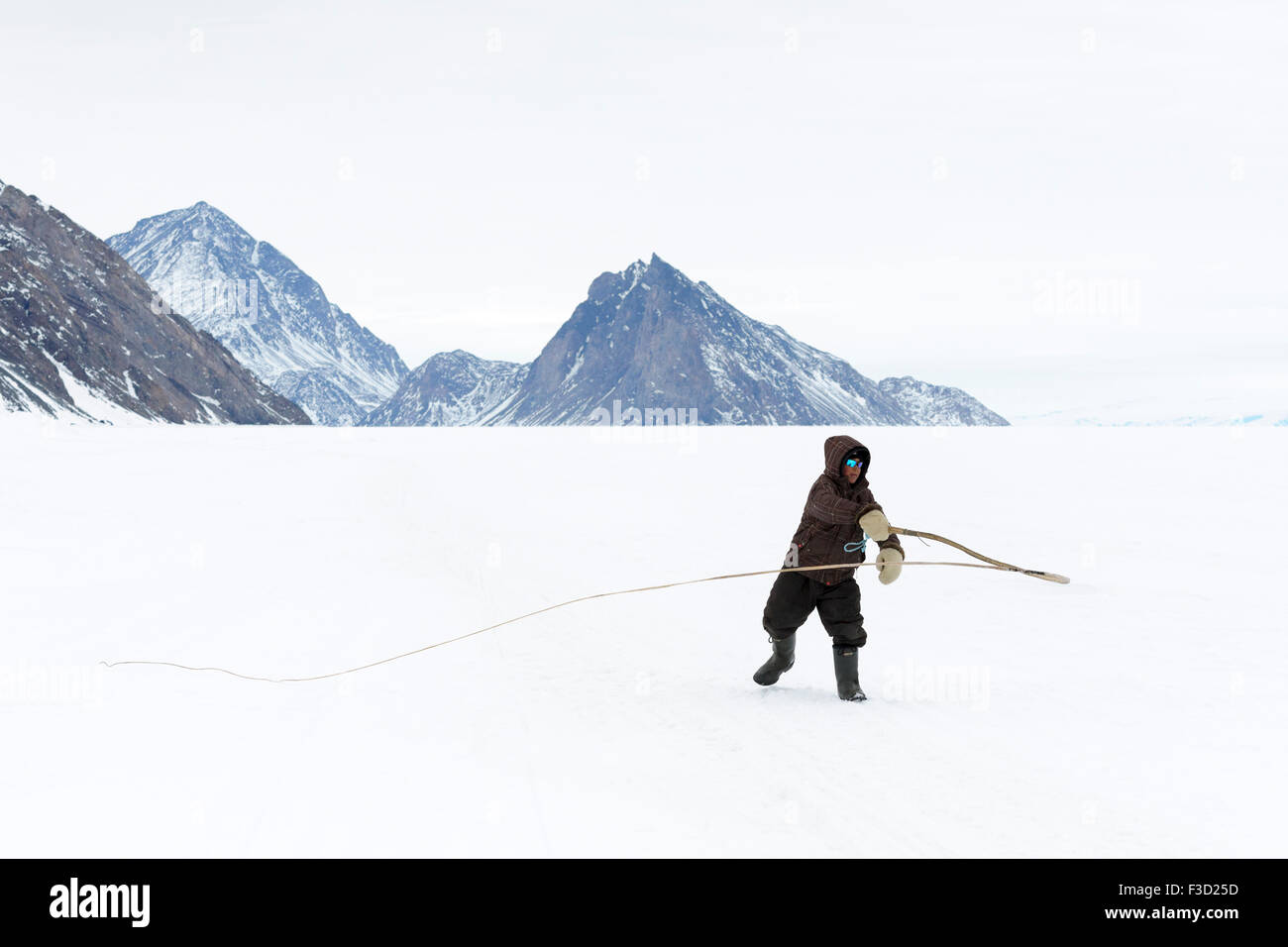 Inuit young boy practicing with traditional dog whip on the floe edge, Baffin bay, Nunavut, Canada. Stock Photo