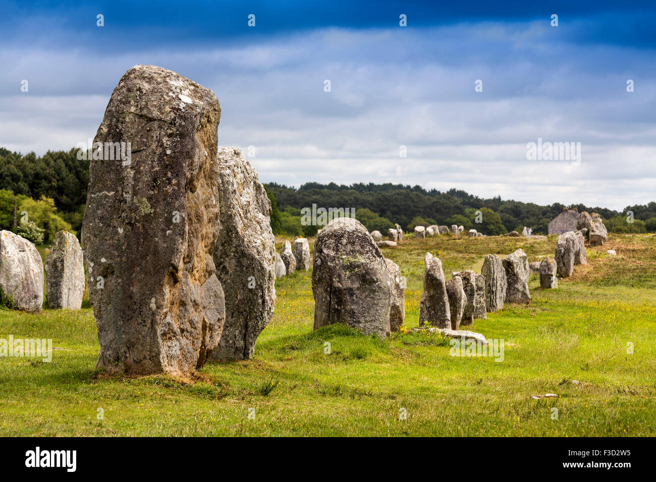 Alignements Menec megalithic Standing Stones Neolithic Carnac Morbihan French Brittany France Europe - Stock Image
