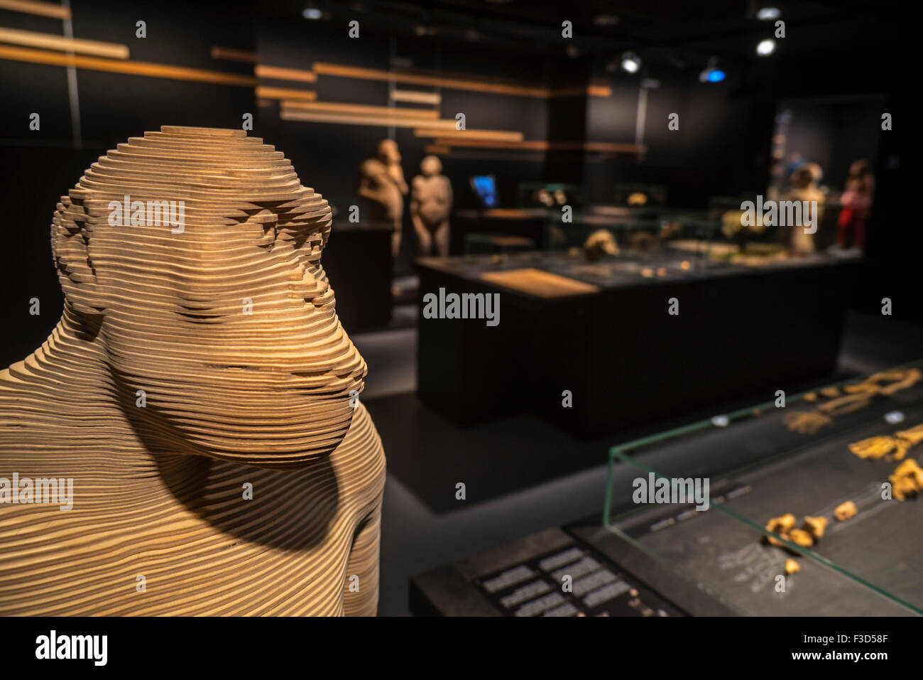 Life-size 3D hominid species that illustrate human evolution, Royal Belgian Institute of Natural Sciences in Brussels, - Stock Image