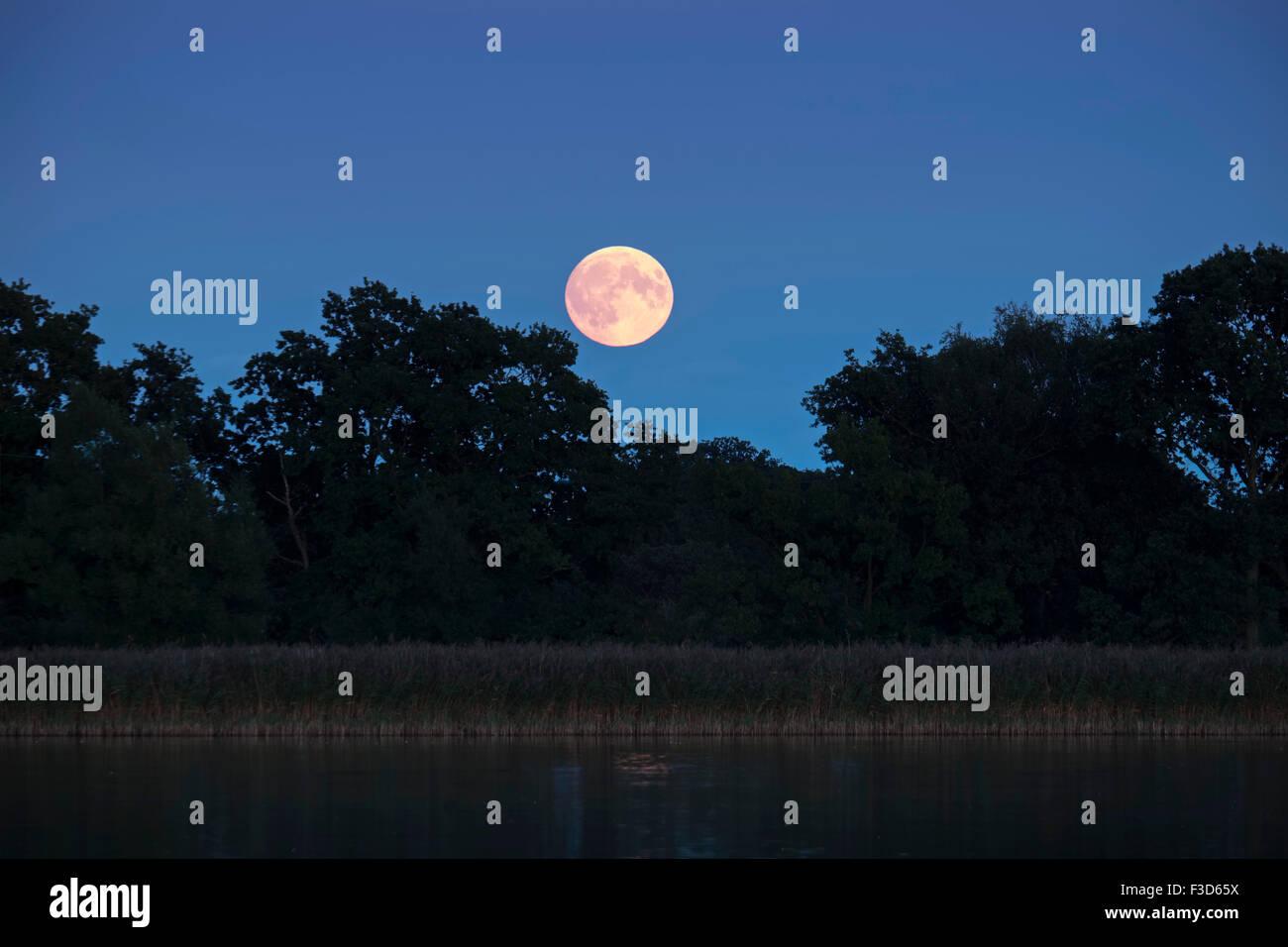 Full Moon Rising over Hickling Broad Norfolk UK - Stock Image