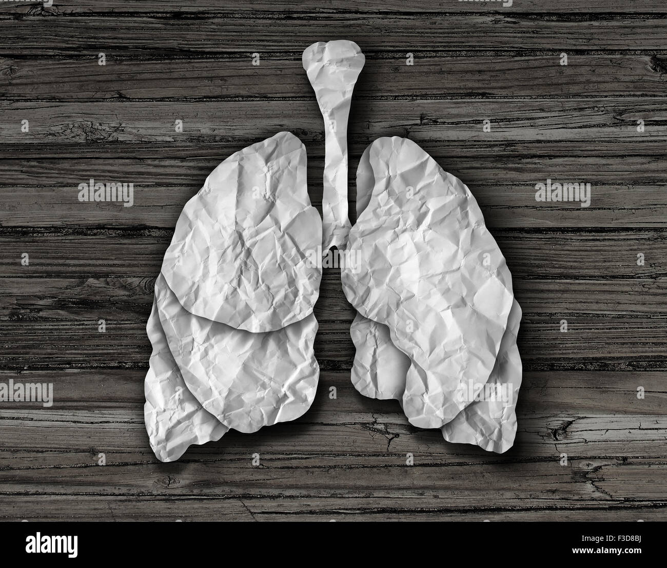 Human lung concept or healthy lungs organ made of cut crumpled white paper on an old wood background representing - Stock Image