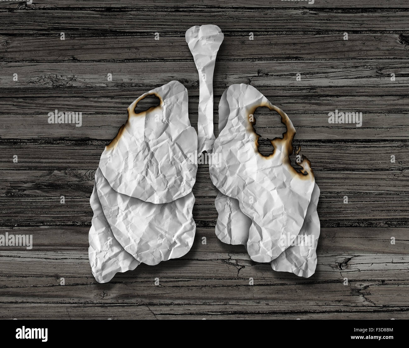 Human lung cancer concept or illness and losing human lungs health care symbol as a decline in respiratory function - Stock Image