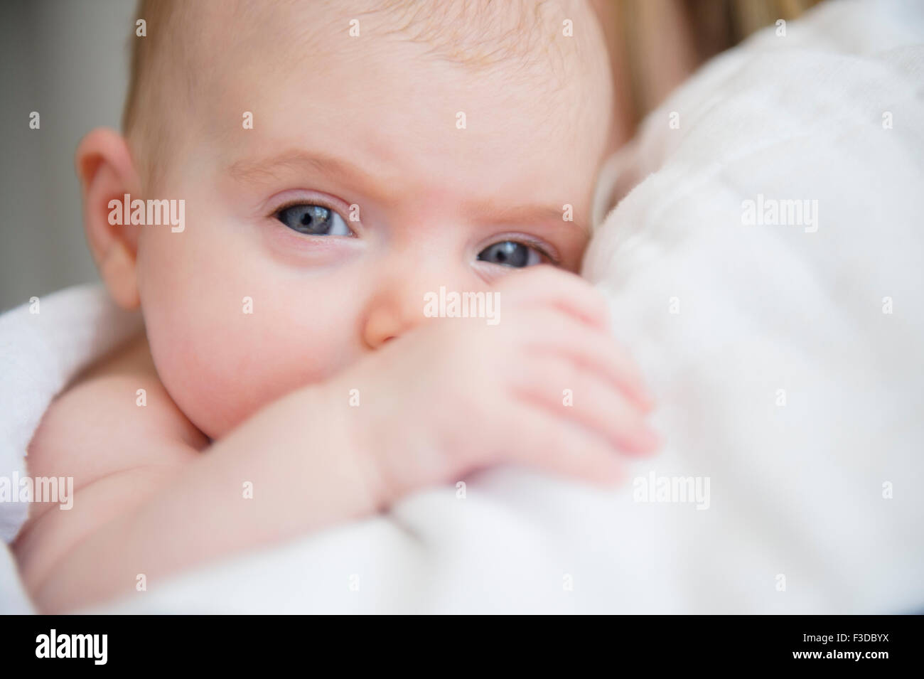 Portrait of baby girl (2-5 months) in mother's arms - Stock Image