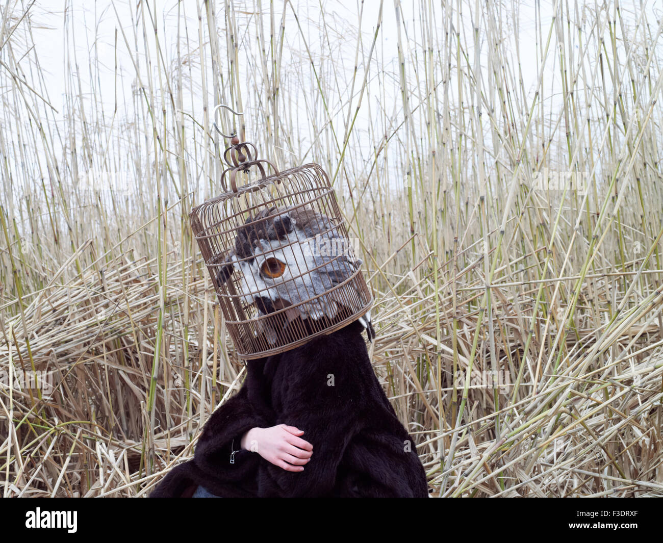 A felt mask being worn by a model. These masks are often worn for theatre and fashion productions. Stock Photo