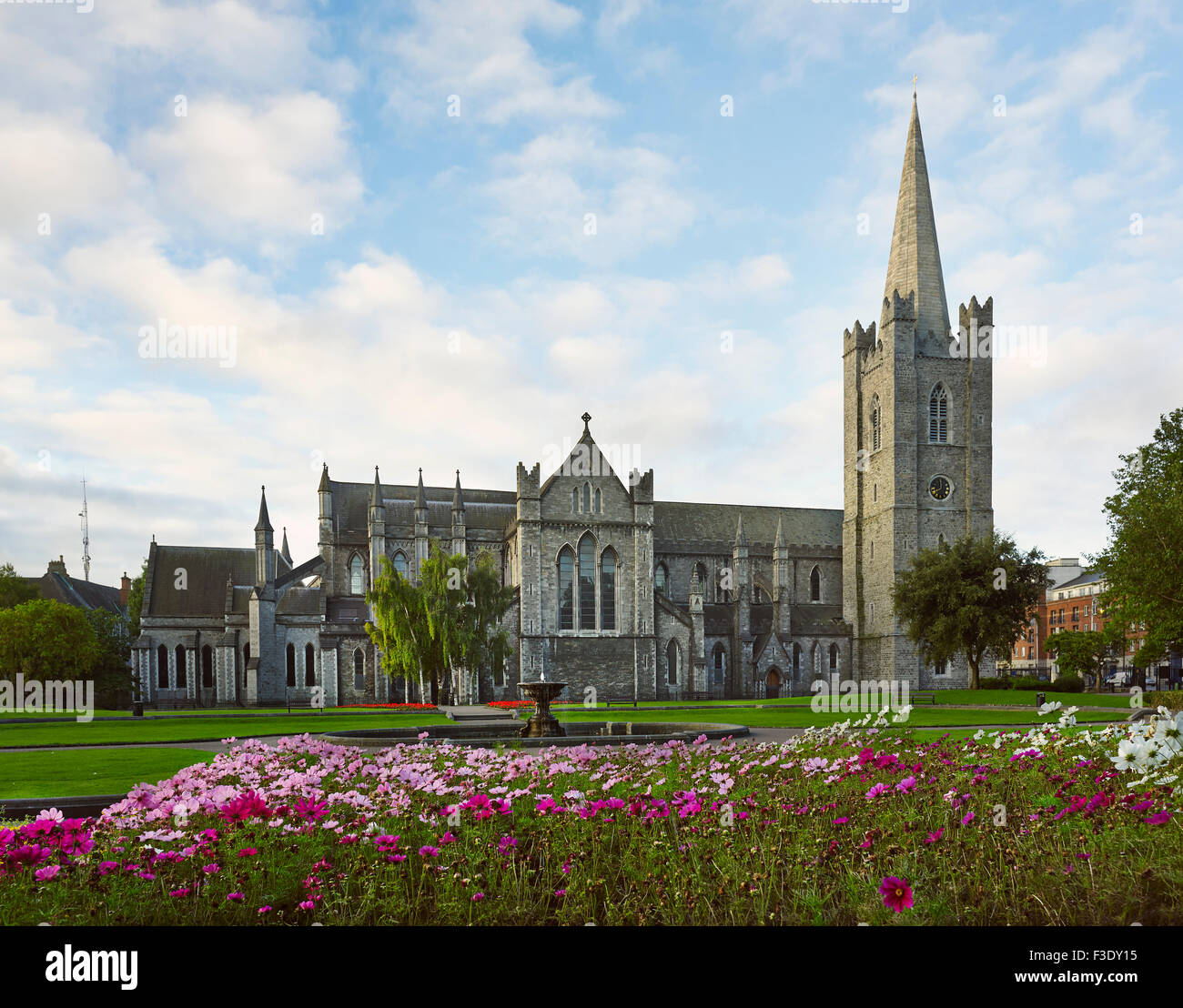 St Patrick's Cathedral Dublin north - Stock Image