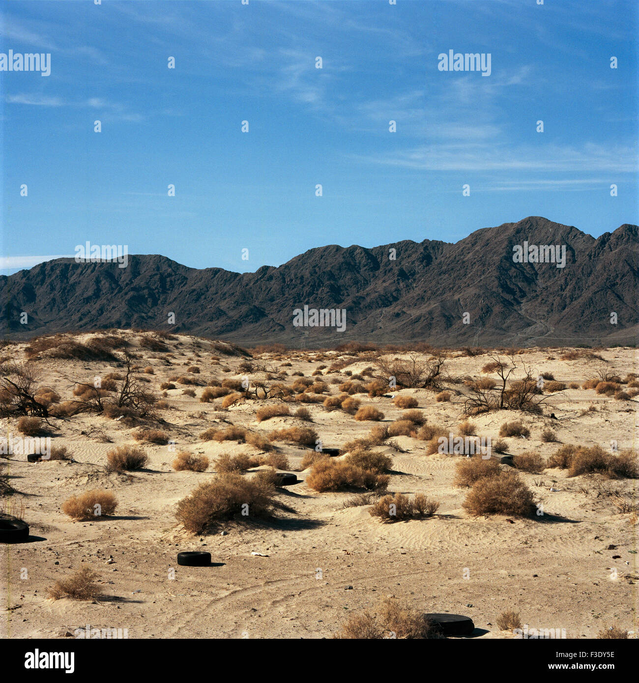 Desert littered with tires - Stock Image