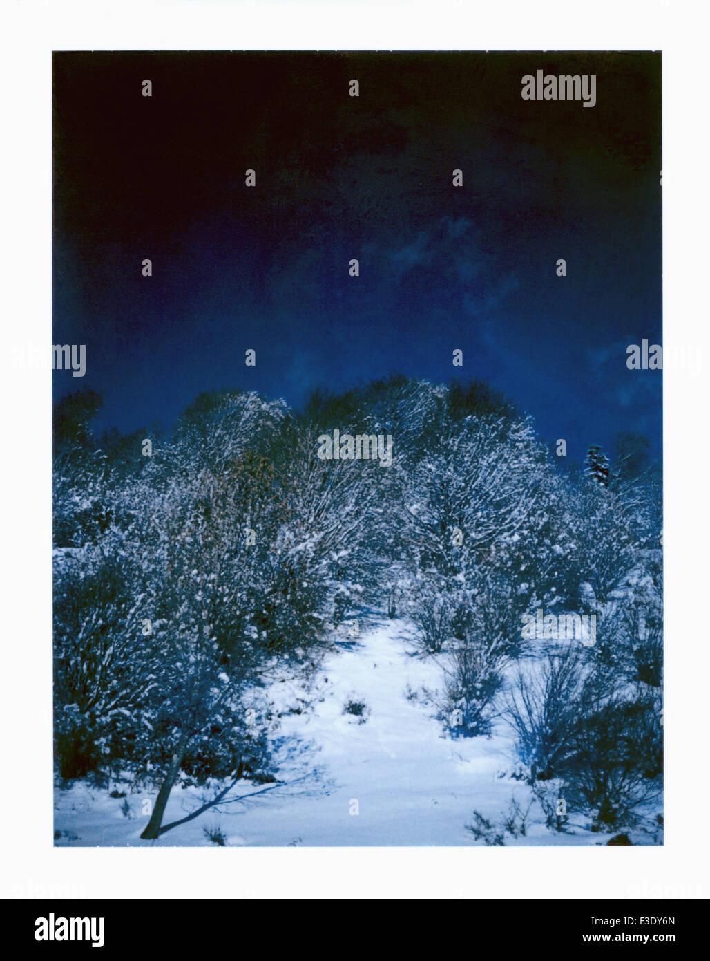Snow-covered hillside - Stock Image