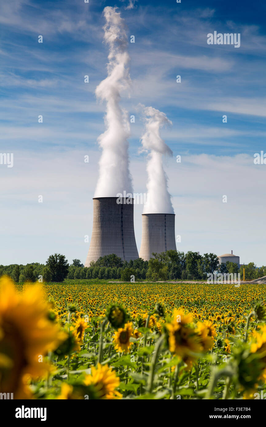 Golfech Nuclear Power Plant sunflowers field Tarn et Garonne France Europe - Stock Image