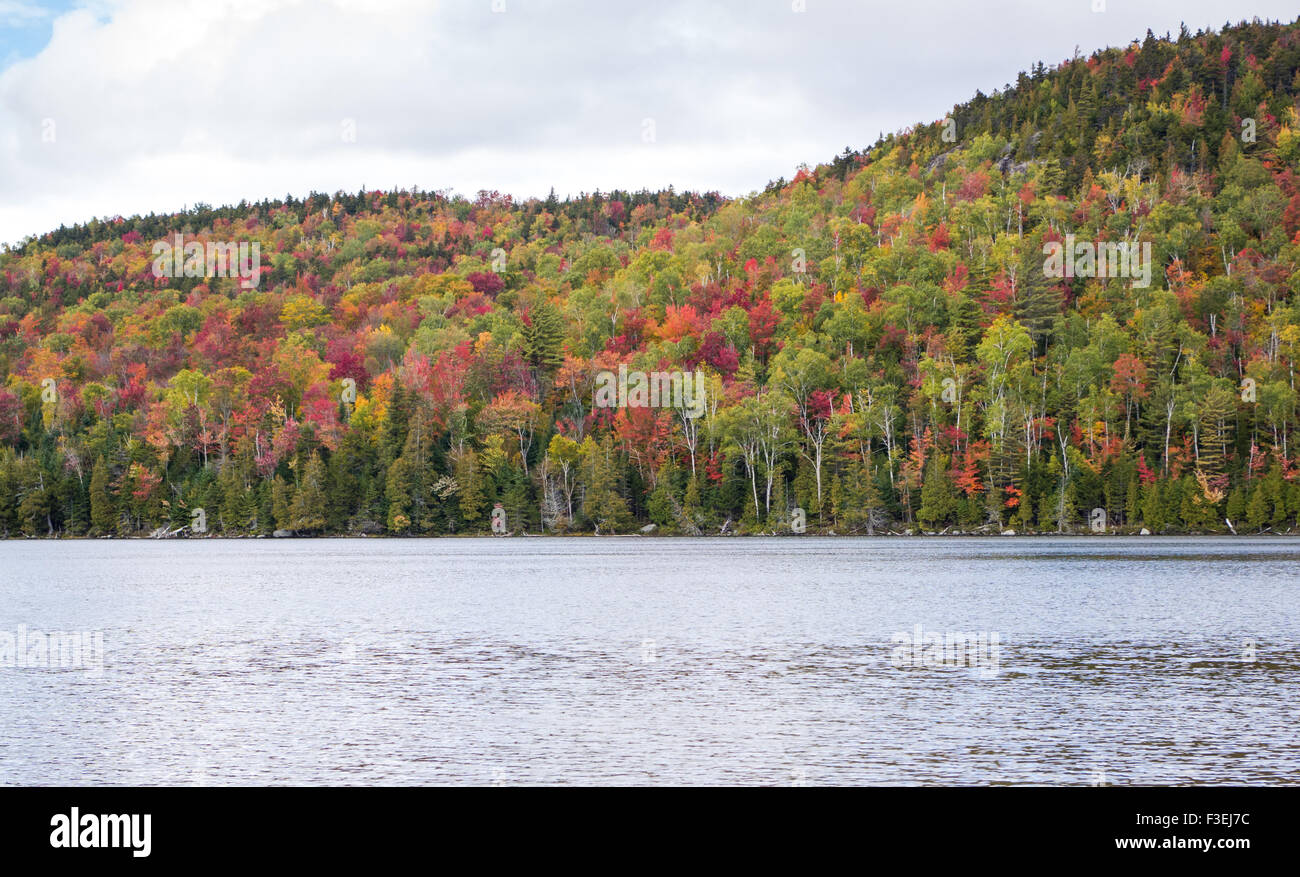 Fall color in the Adirondacks - Stock Image