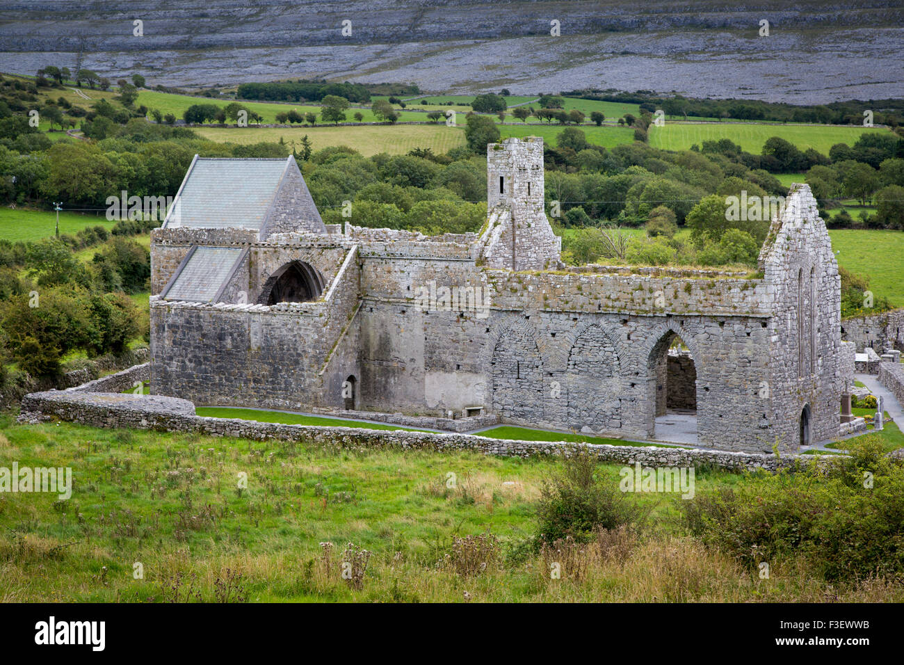 Ruins of 13th century Corcomroe Abbey near Ballyvaughan in the Burren Region of County Claire, Republic of Ireland - Stock Image
