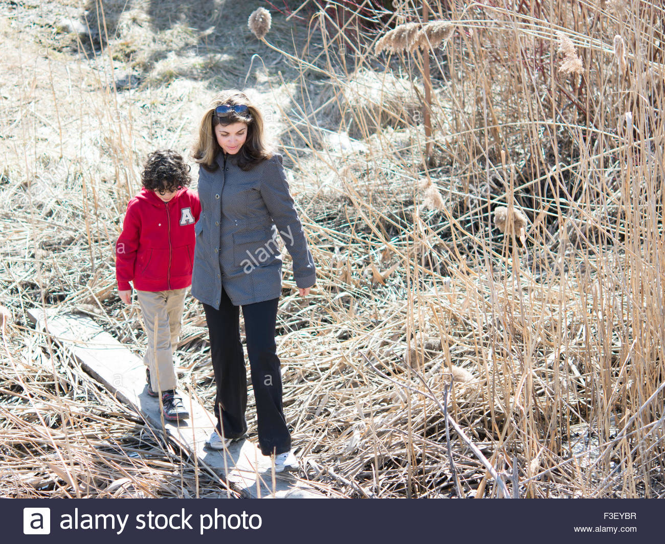 Mother guidance: Woman and child walk through a field.  She is wearing a gray jacket and holds hands with a boy - Stock Image