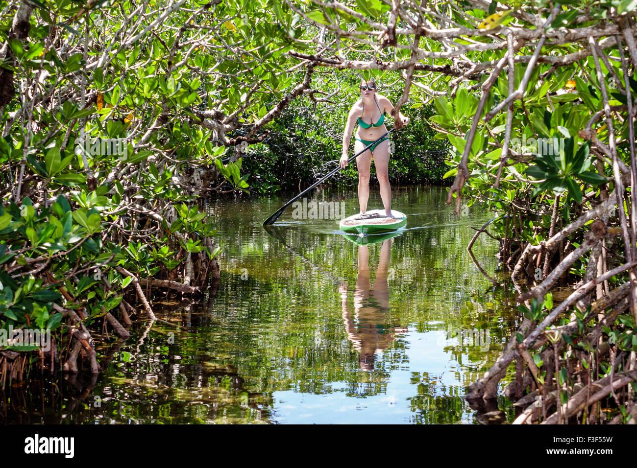 Florida Keys Key Largo John Pennekamp Coral Reef State-7740