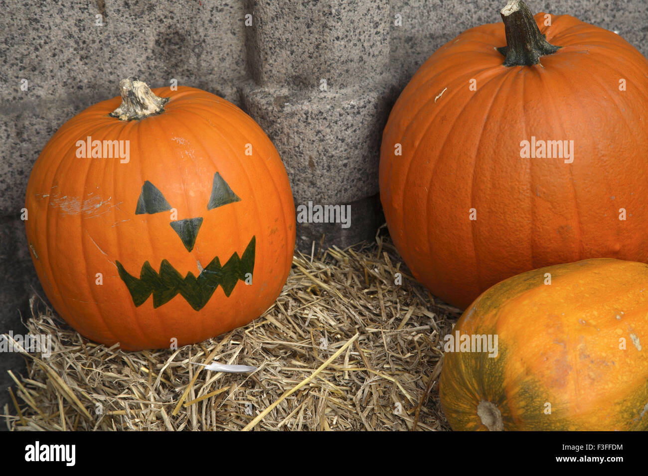 Vegetable ; myth pumpkin All Saints Eve ; Copenhagen ; Denmark ; Scandinavian - Stock Image