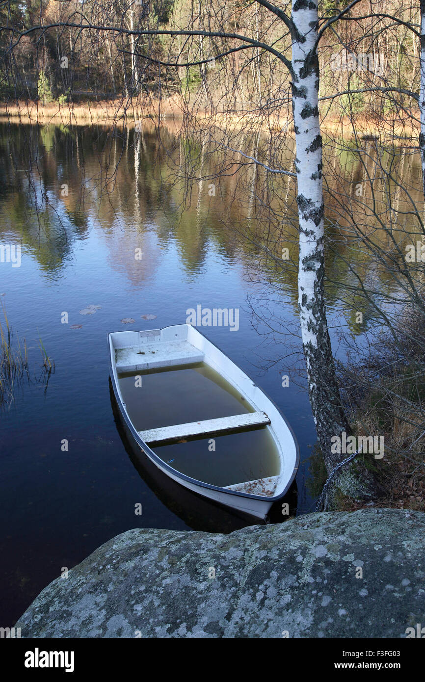 Boat full of water floating in lake tied by chain to tree ; Sweden - Stock Image
