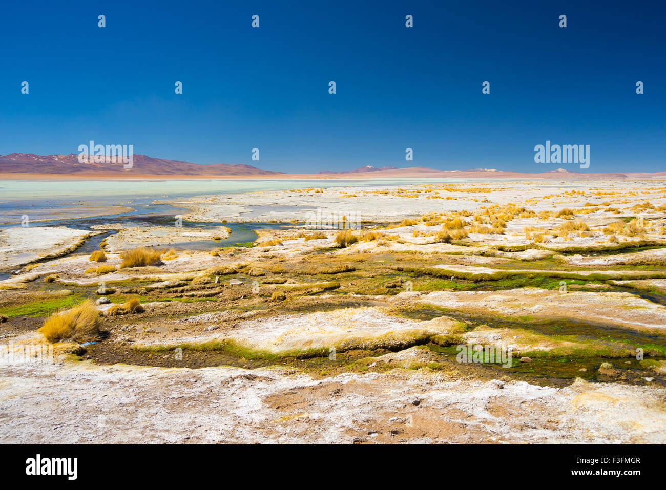 Colorful hot spring with deposits of minerals and algae on the Andean Highlands, Bolivia. Salt lake, mountain range - Stock Image