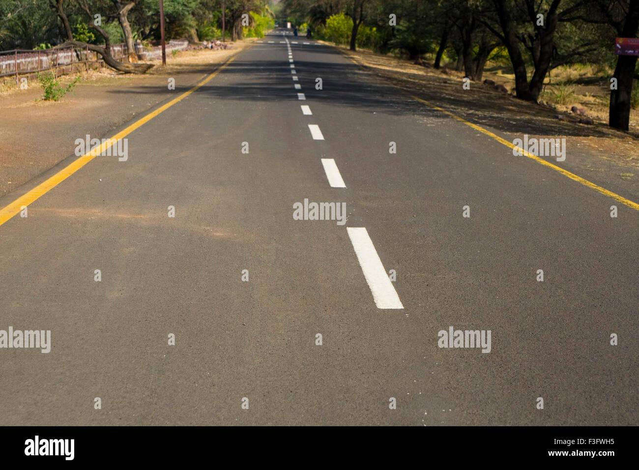 White and yellow stripes on road of Bhopal zoo ; Madhya Pradesh ; India - Stock Image