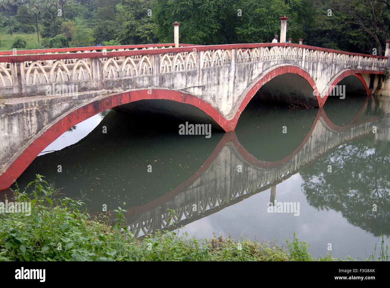 Arches of reinforced cement concrete bridge on Dahisar river with reflection ; Sanjay Gandhi National Park ; Borivali - Stock Image