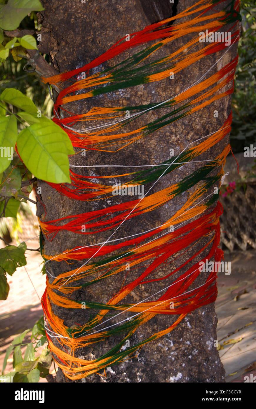 Sacred thread tied on wood ; India - Stock Image