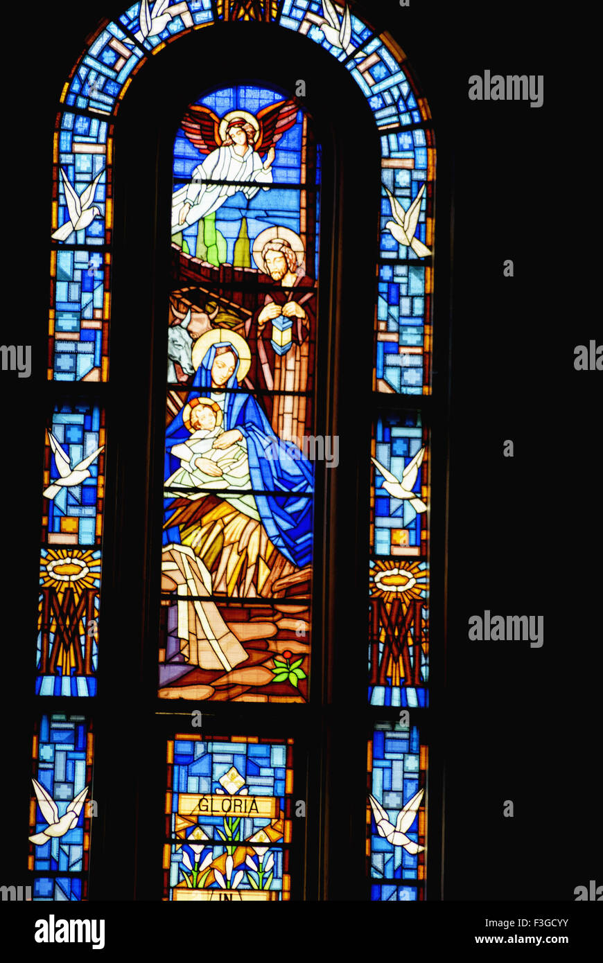 Gloria glory to god birth of Jesus on stained glass in basilica of St. Benedicta of cross - Stock Image