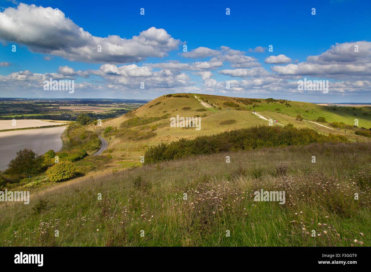 The Ridgeway long distance path and Chiltern Downland Ivinghoe Hills Bucks UK - Stock Image