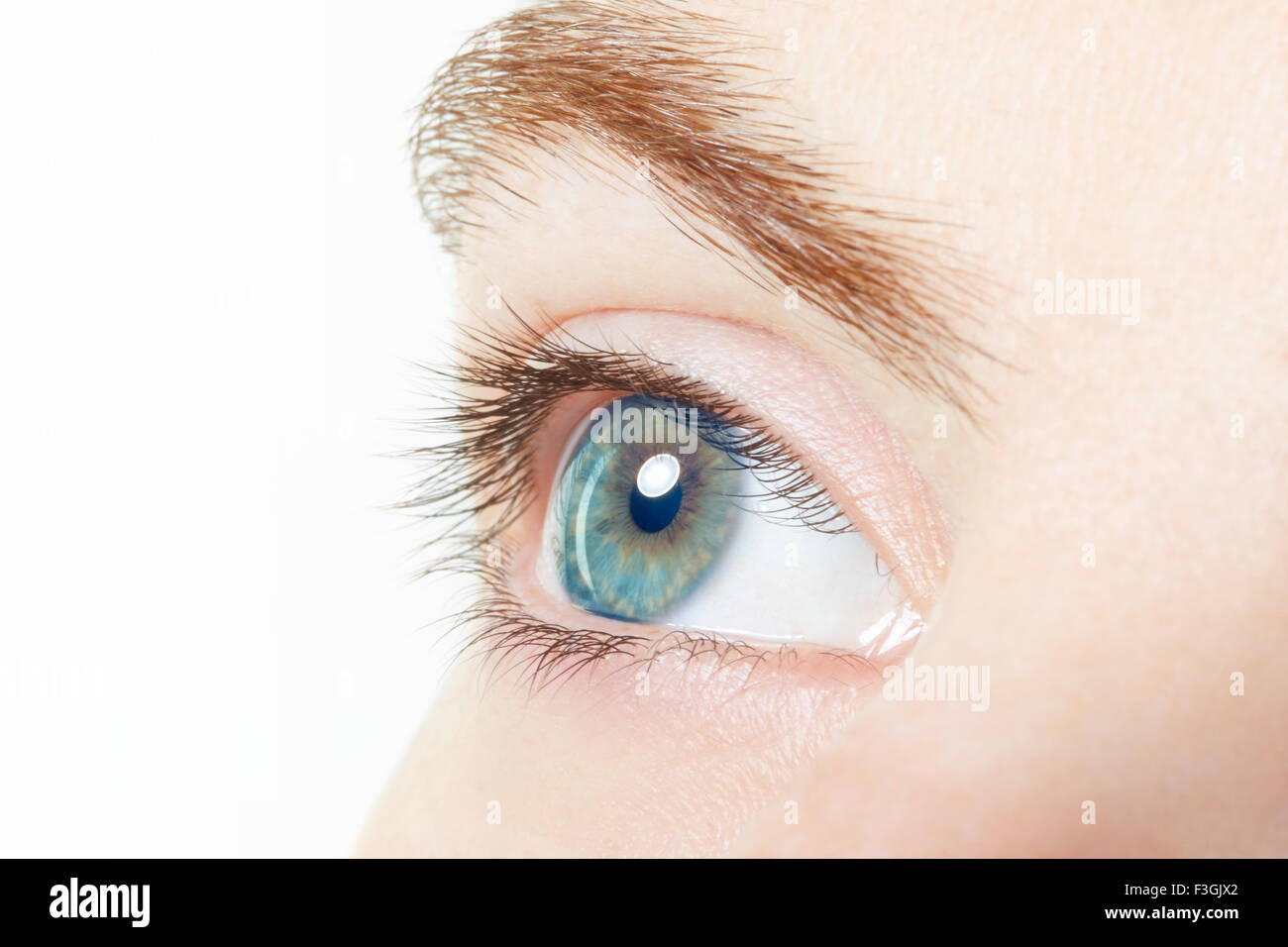 Human, blue healthy eye macro with white background - Stock Image