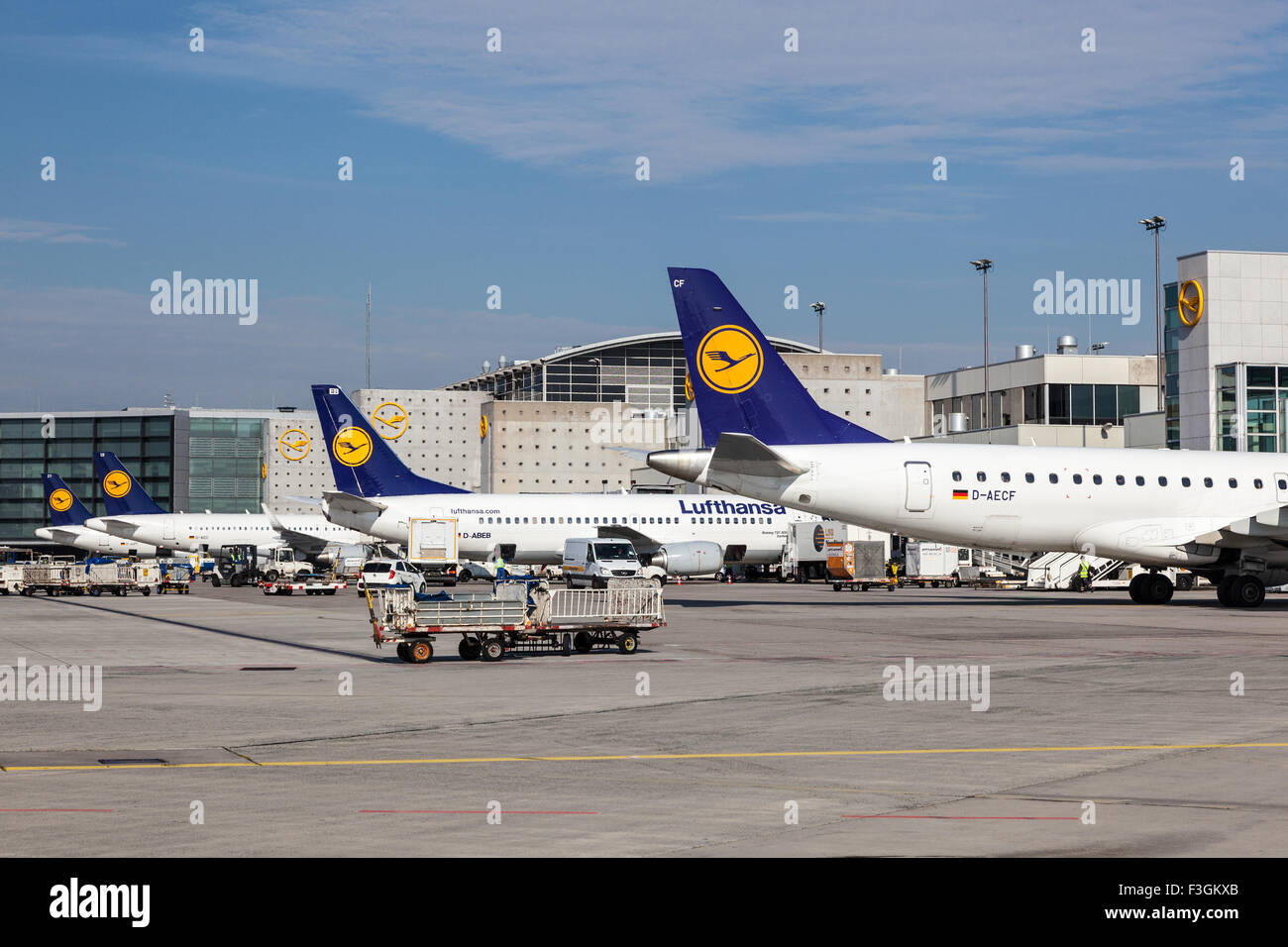 Lufthansa Airplanes at the Gates of the Frankfurt Airport - Stock Image