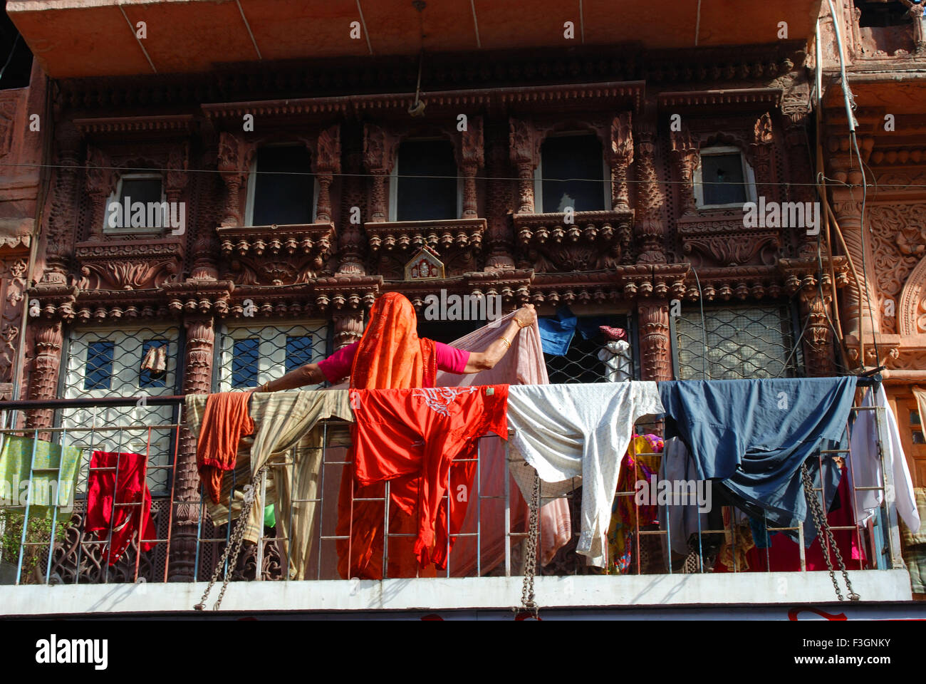 Woman drying cloths ; Jodhpur ; Rajasthan ; India - Stock Image