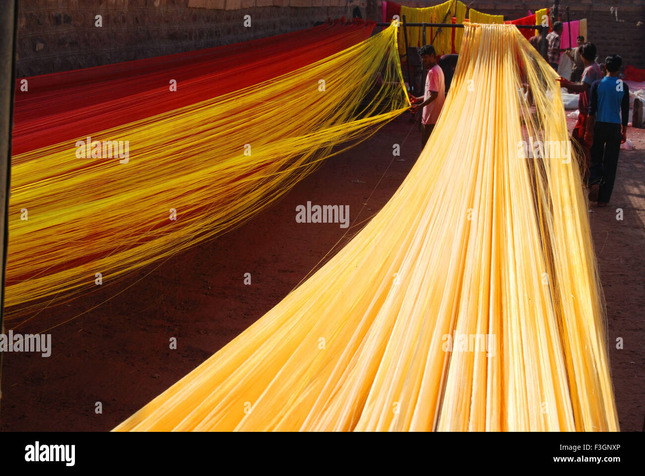 Man separating and drying silky thread for making silky garland - Stock Image