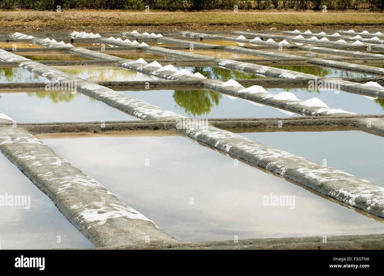 Salt meadow or saltpans at village Shiroda ; district Sindhudurga ; Maharashtra ; India Stock Photo