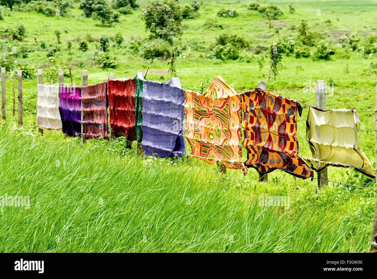 Colourful cloths on fence and green background - Stock Image
