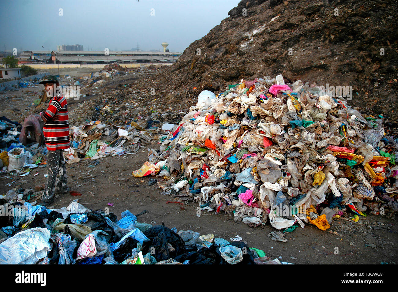 Garbage collector with plastic scrap at Gazipur dumping ground ; Delhi ; India - Stock Image