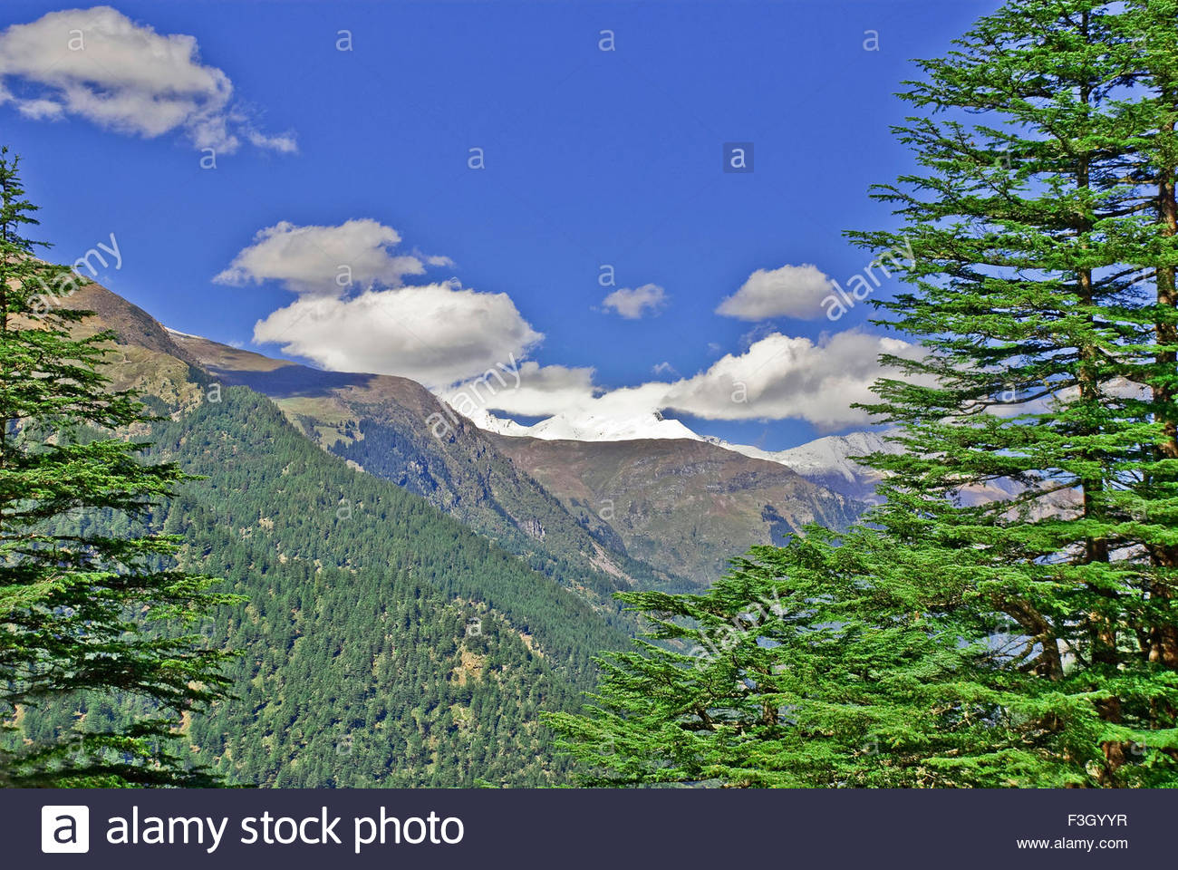 Glorious Kinnar Kailash range on sunny day from Sangla valley; Himachal Pradesh ; India Stock Photo