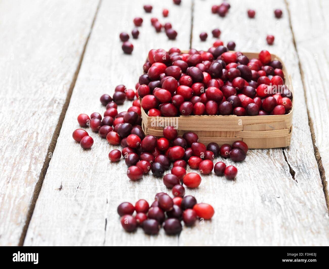 Cranberries in vintage crate on whitewashed wooden table - Stock Image