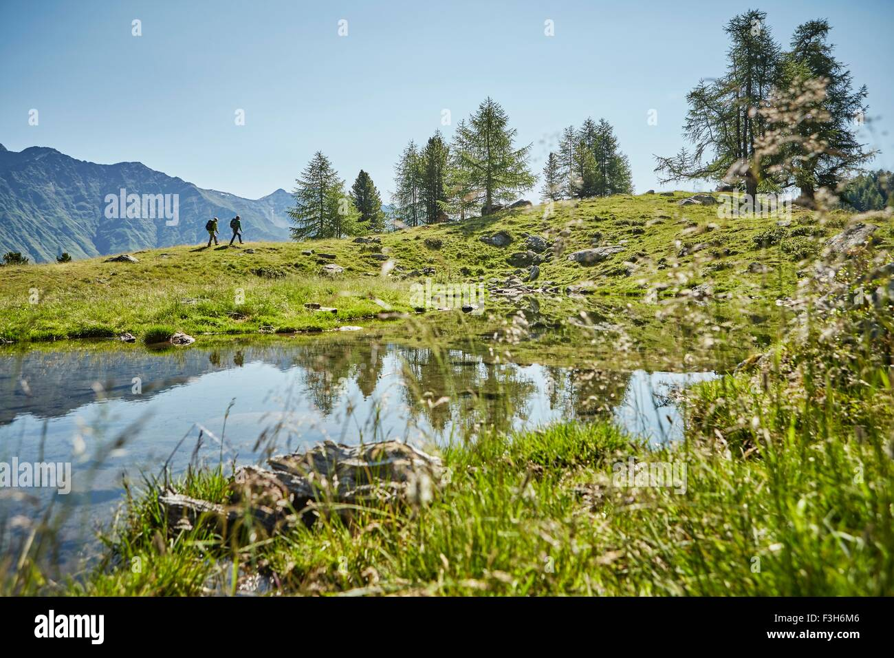 Young hiking couple in distant landscape, Karthaus, Val Senales, South Tyrol, Italy - Stock Image