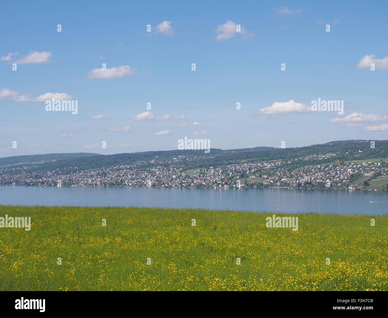 The Lake of Zurich - Stock Image