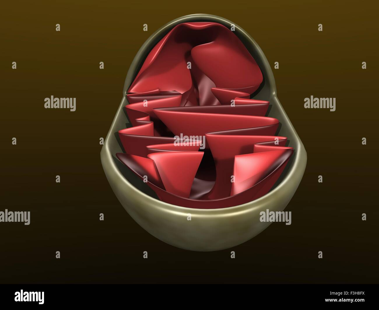 3d illustration of a mitochondrium - Stock Image