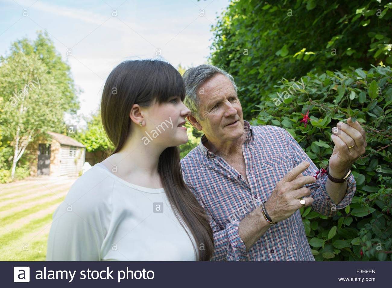Father looking at flowers in garden with grown daughter - Stock Image