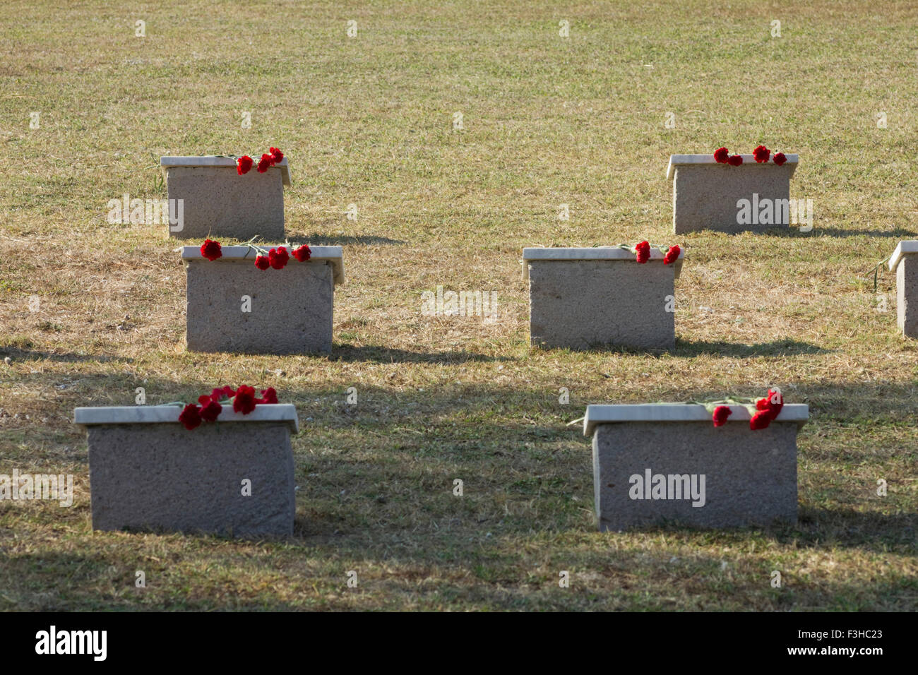 Russian war casualty tombstones with red carnations on them in the CWGC East Mudros cemetery. Moudros city Lemnos - Stock Image