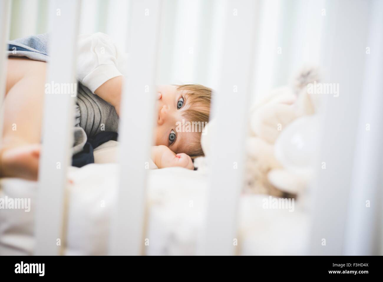 Female toddler lying in crib looking at camera - Stock Image