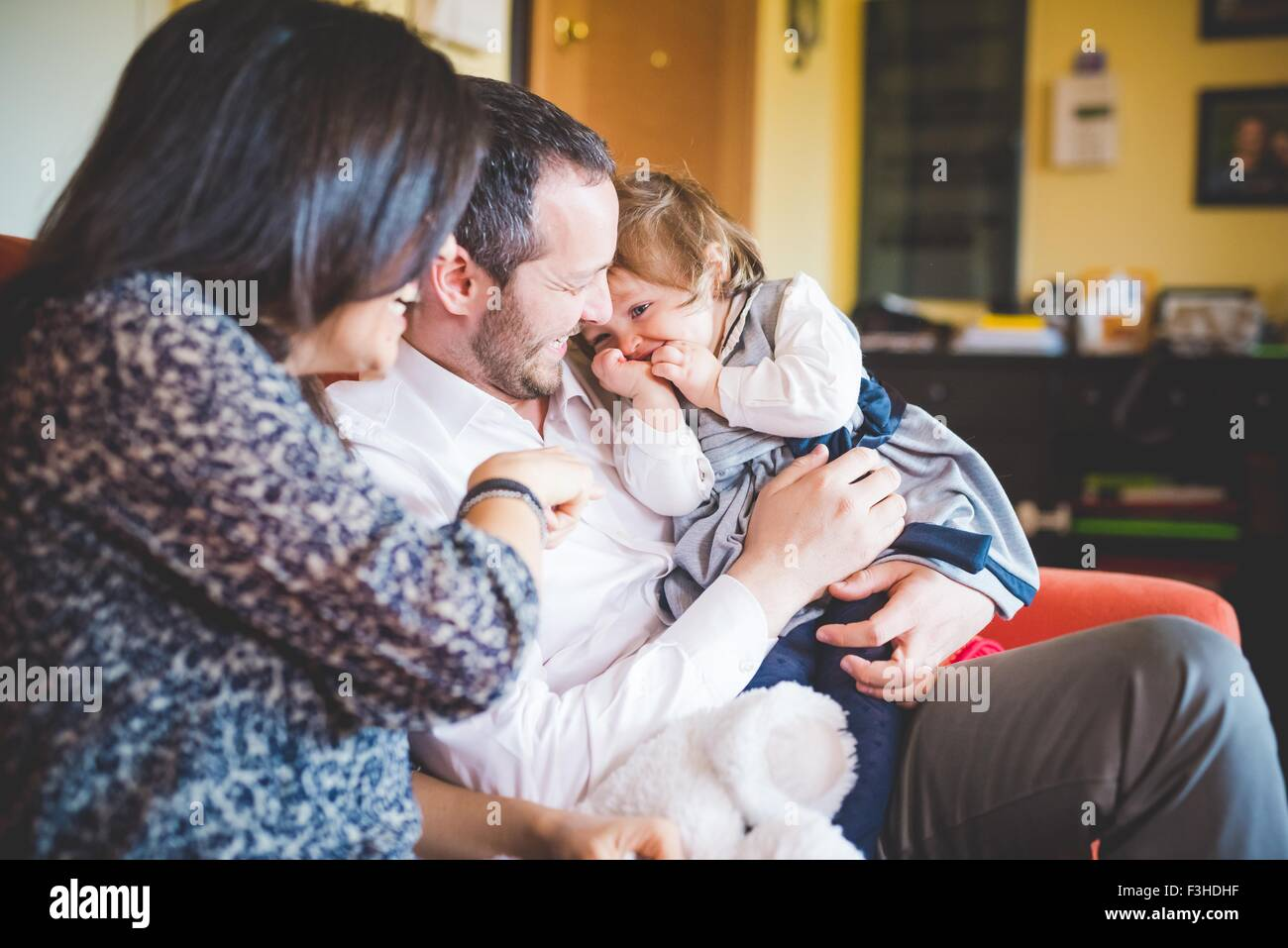 Shy female toddler sitting on fathers lap in living room - Stock Image