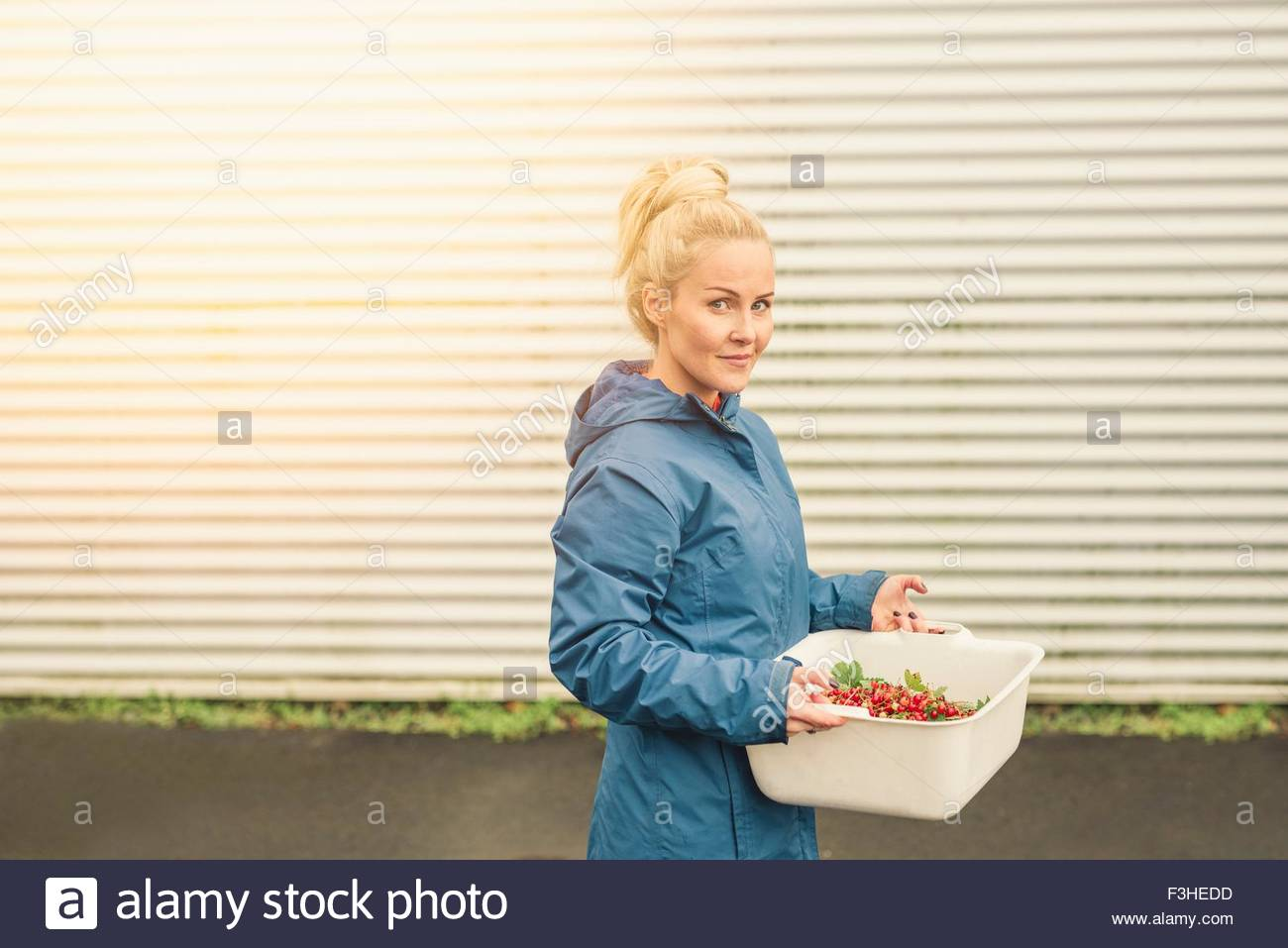 Mid adult woman holding container of redcurrants, outdoors - Stock Image