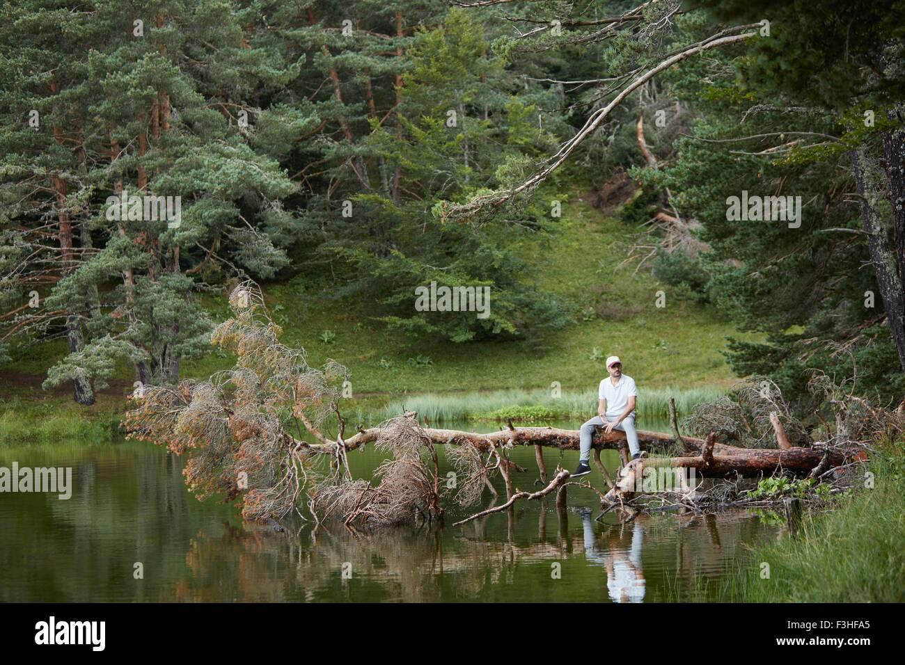 Man on fallen tree near lake, Valle de Aran, Spain - Stock Image