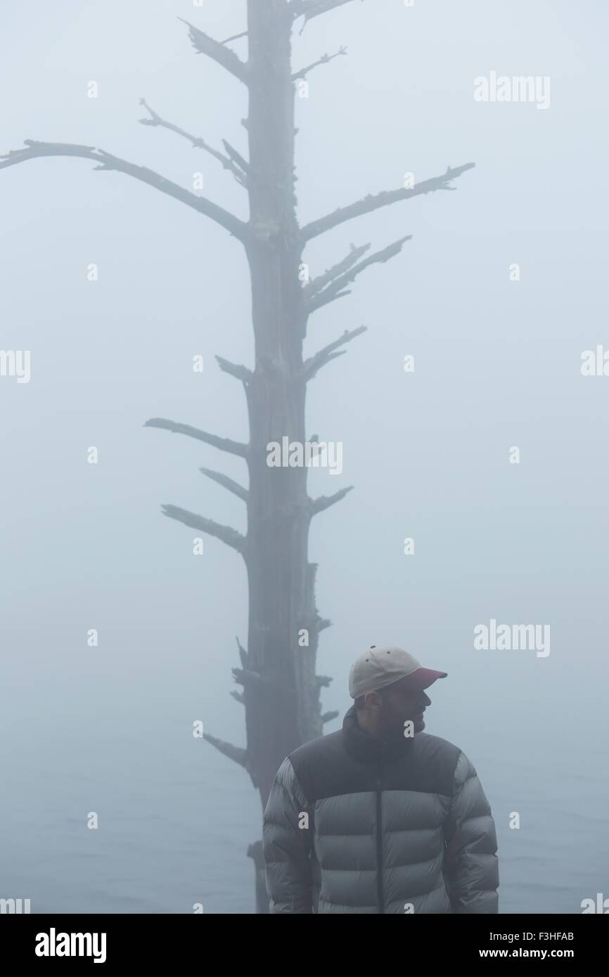 Man standing by bare tree in fog - Stock Image