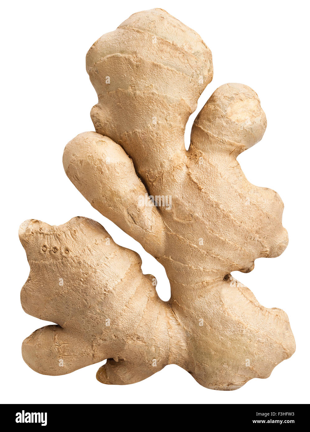 ginger isolated - Stock Image