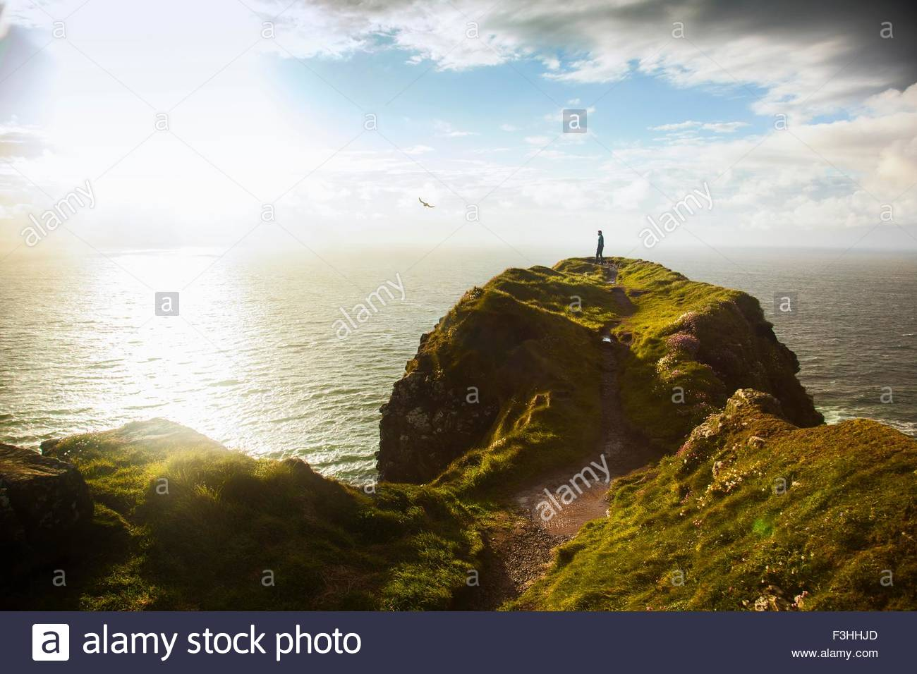 Giants Causeway, Bushmills, County Antrim, Northern Ireland, elevated view - Stock Image